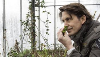 Tips voor een duurzame tuin, Lodewijk Hoekstra, duurzaam tuinieren, Groener Wonen