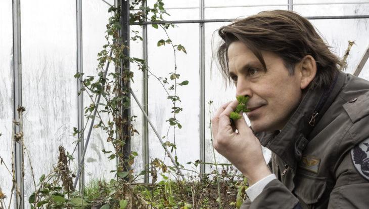Tips voor een duurzame tuin – Lodewijk Hoekstra