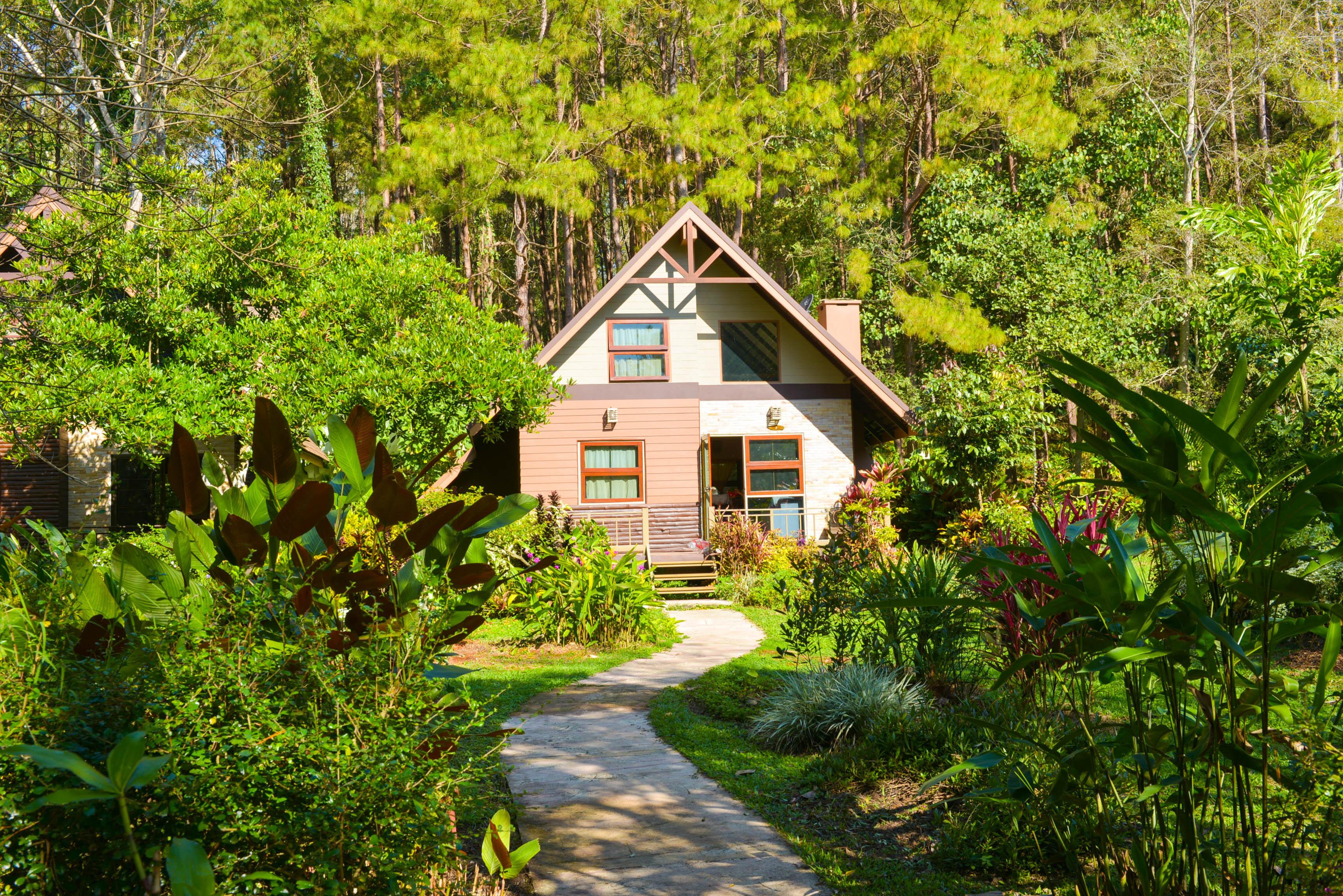 natuurhuisje, duurzame vakanties, vakantie huisje, groener wonen