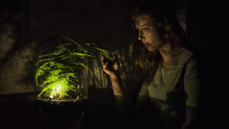 Living Light – échte groene energie
