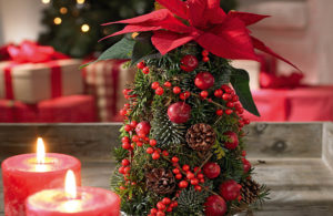 Miniatuur kerstboom