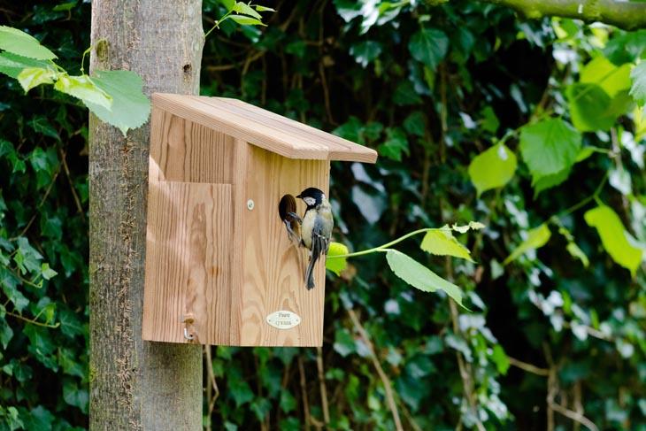 Duurzaam nestkastje