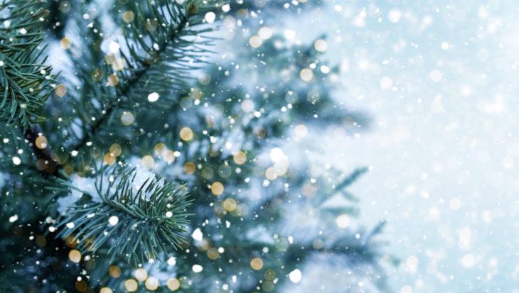 Duurzame kerst - kerstboom