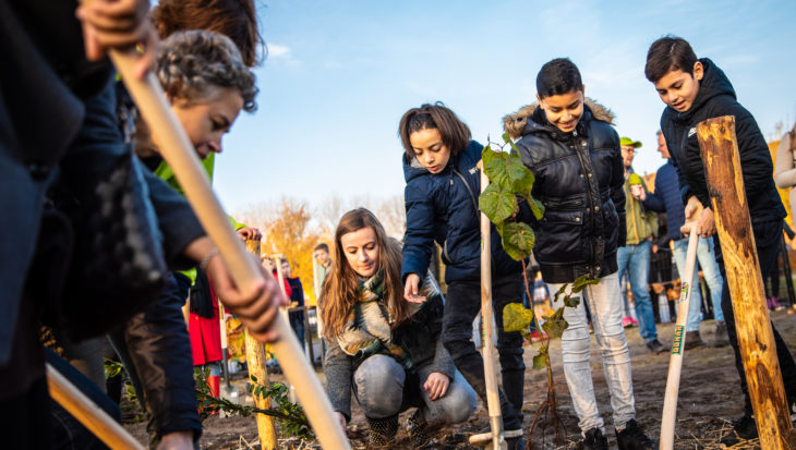 Nederland wordt minstens 50.000 inheemse bomen rijker