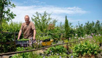 Diervriendelijke inspiratie tuin - Hoveniersbedrijf de Rooij - Rens de Rooij