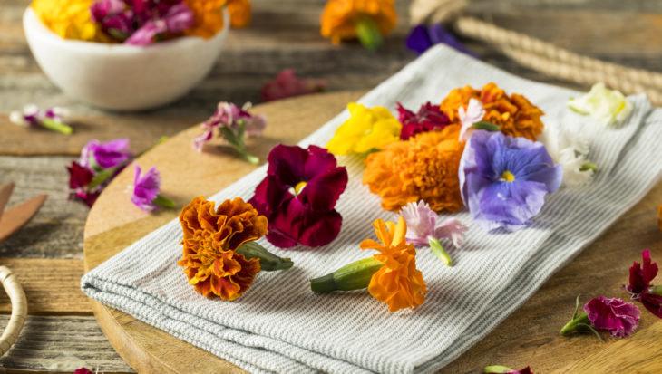 Eetbare planten op je terras