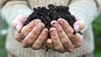 12 tips en weetjes over compost