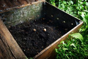 Zelf compost maken composthoop