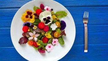 Plantaardig eten tips en voordelen