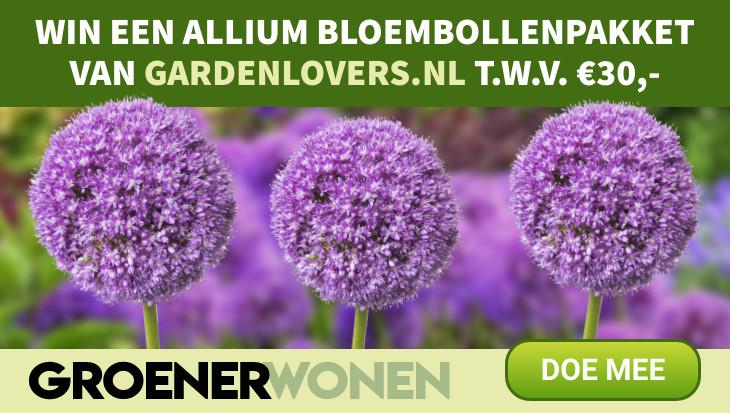 Winactie Groener Wonen nieuwsbrief Gardenlovers.nl Allium bloembollen