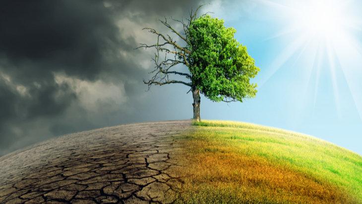 Dit kan jij doen tegen klimaatverandering